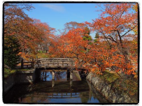 このあたりもかなり紅葉が進んできているようですね〜。<br />お堀と石垣と橋、そして紅葉と、雰囲気でてます。
