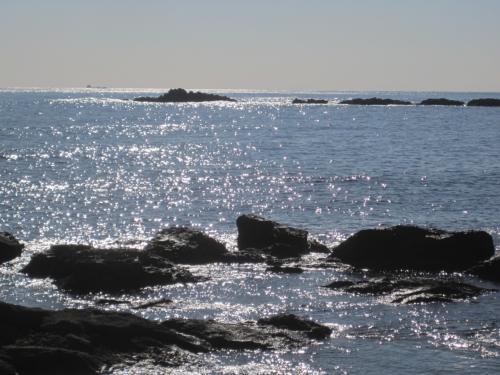 お目当てのレストランの向かいは、野島崎灯台近くの千畳岩のある自然あふれる景色のエリア。<br /><br />波にキラキラ光って、まぶしかった。