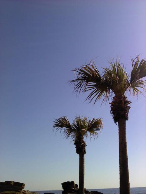 空もこんなに青くって、気持ちいい。