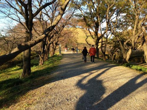 次は、さきたま古墳群へ移動。<br />目的は、光成が陣をとった丸墓山古墳です。<br /><br />ここは日本一大きな円墳と言われ、墳頂からは忍城や秩父、群馬方面などを眺望することができます。<br /><br />ちなみに、古墳は伸びる小高い一本道は石田堤の一部です。<br />春はとてもきれいな桜並木になり、花見の名所です。