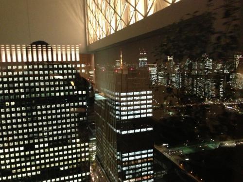 丸の内ビル35階には、無料で入れる展望スペースがあります。<br /><br />周辺には名だたる高級レストランがありますが、さすがに入れません。<br /><br />この展望スペースからは、東京タワーを望むことができました。