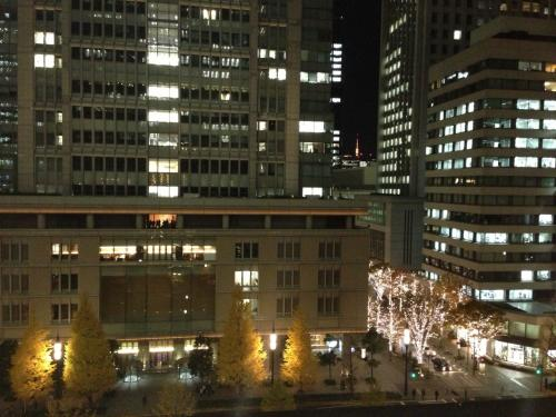 新丸ビル展望デッキから丸ビル方向を望む。<br /><br />右下の光の塊は、丸の内仲通りのイルミネーションです。<br />後で写真に載せますが、街路樹をLED電球で飾り、ものすごいきれいな光並木となっています。<br /><br />そして、奥には東京タワーが見えます。<br />