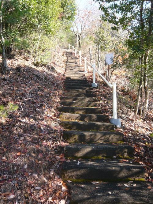 長い階段を登り