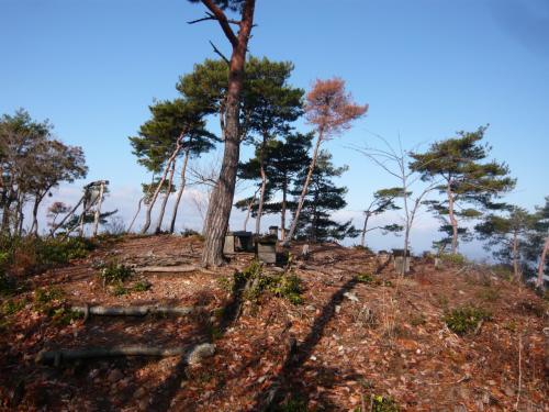 迫間城跡(迫間山頂)(標高309m)