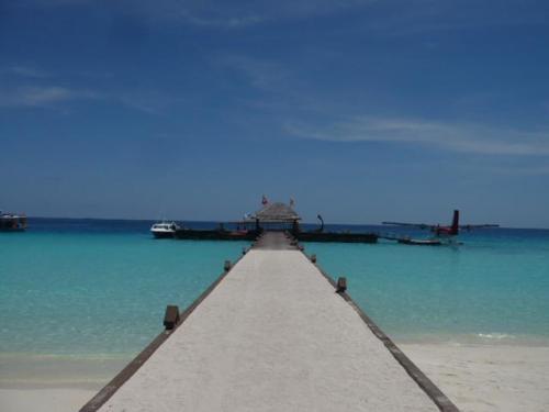島から桟橋の景色。