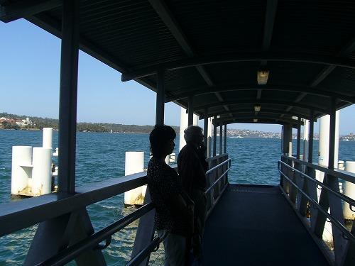 シドニーのフェリーは観光用もさることながら,市民生活や通勤の足となっている。チケット窓口もなく(東京のSuicaのような)非接触型の改札口のみだったので,切符のないままに乗船を待つ(サーキュラーキー到着後に精算できた)