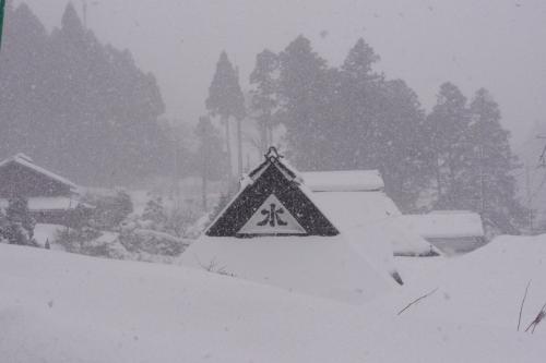 大原辺りでも雪が舞っているも積雪は見られず<br />朽木へと車を進める<br />「トンネルを抜けると雪国だった」のフレーズ通りの<br />モノトーンの世界へ