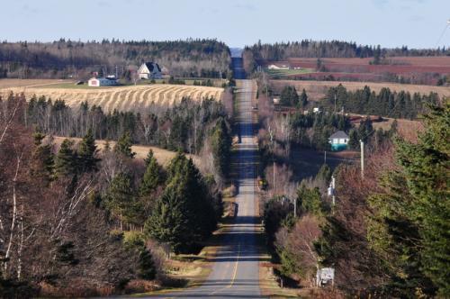 ニューグラスゴーから224号線へ。<br />いくつもの丘を越えていく直線の道。<br />ここも素晴らしい!