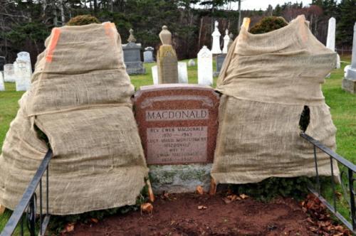 モンゴメリーの墓地。<br />左右の木は冬囲いされています。