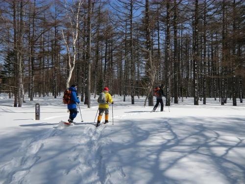 登山道は雪に隠れ、どこを歩いても自由なので人の踏み後を避けて真っ白な雪面(写真)を踏み歩く。これは楽しい。<br />