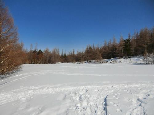 広い雪原(写真)に出る。ここは蓼科山7合目登山口の駐車場である。<br />