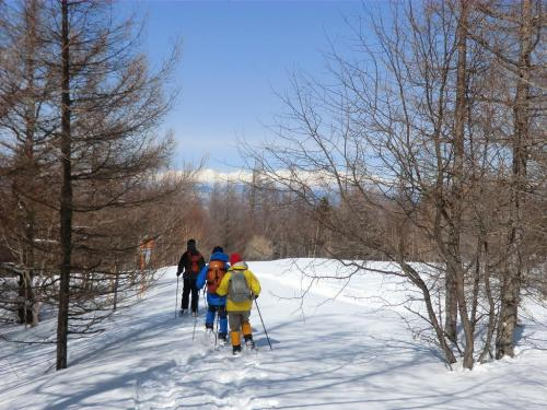 しばらく深い雪に埋もれた森の中を進み「蓼科スカイライン」に出る。<br />