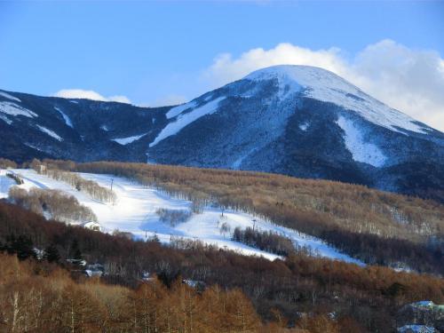 行き先はホテルからすぐ近くにある白樺高原スキー場(写真)である。まずはゴンドラリフトに乗ってスキー場トップへ行く。<br />