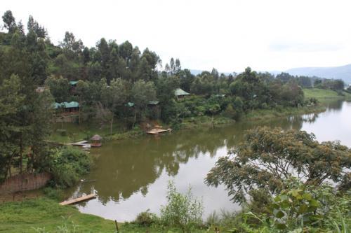 写真の真正面に池に飛び出している場所がありますが、そこから飛び込んだり出来るそうです。