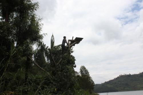 飛び込み台があったので、登ってみました。<br />ただ、木に台をのせてあるだけなので、登る前に気を付けないと木が折れるかもしれません。おそらくメンテナンスなんてしてないでしょうし。<br />ぶらぶら歩いて湖を観光して13時ぐらいにカバレに戻って来ました。
