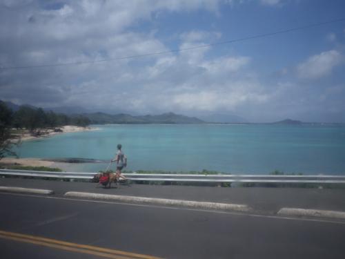 帰路はラニカイからカイルアタウンまで<br />散歩しながら戻る予定<br />なので<br />エメラルドグリーンの海を車中から眺めながら<br />カイルアビーチを横目に<br />ラニカイビーチまでバスで