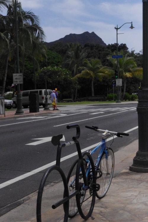 アチコチで見かける<br />自転車止めも自転車