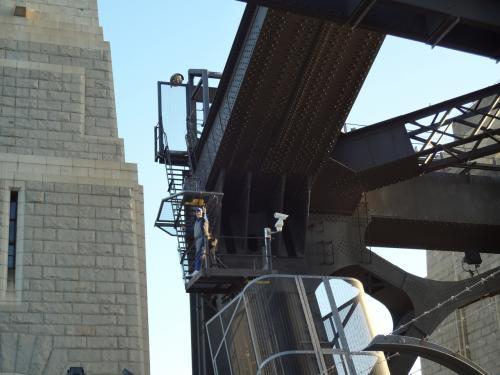 橋脚を登るヒト発見