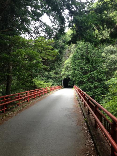 落合橋を渡ってトンネルを抜けます。