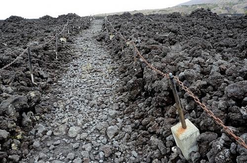 焼走り熔岩流(やけはしり・ようがんりゅう)の自然観察路。<br />ポツポツと木の生え始めた場所があるかと思えば、黒い岩だらけの不毛の場所も。<br />こんな所でうっかり転んだら、怪我をしたりカメラ類を壊すのは必至。<br />お足元にはくれぐれもご用心。<br /><br />溶岩流の跡っていうと、ハワイ島のチェイン・オブ・クレイターズ・ロードのドライブを思い出すね。<br />あそこの岩も黒々していたけど、密度が高くてみっちりした感じだった。<br />焼走り熔岩流の岩は、密度が低くてザクザクとした質感。<br /><br />お天気がよければ、もっと歩いてみたかったこの道。<br />今日は吹きさらしで寒すぎ! ブルブル ((;゚ェ゚;)) ブルブル<br />お昼も食べたいし、ここで引き返します!