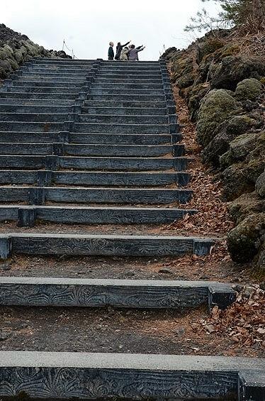 この日は5月とは思えぬ寒さの岩手山周辺。<br /><br />それでも、せっかくここまで来たんだから、焼走り熔岩流(やけはしり・ようがんりゅう)も少しは見て行こう。<br />と、30段あまりの階段を上って自然観察路へ。<br /><br /><br />ふと前を見ると、家族連れ(?)グループが、なにやら指差して歓声を上げていた。<br />行ってみても、別に特別なものは見当たらなかったけど、何だったんだろ(・・?