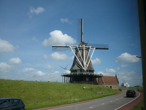 終点に着く手前、またオランダらしく風車!