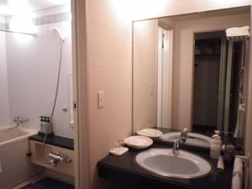 夫は大浴場に<br />はんなりは<br />未だフェリーの揺れが抜けきらず<br />部屋風呂もゆったりした広さなので<br />ユックリ入浴し休む事にしましょう。