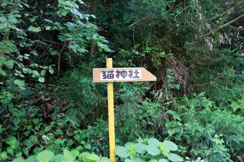 まずは、この島の観光スポットである「猫神社に向かいます」<br />港の海沿いの道をテクテクと歩いて20分程で到着しました。<br />