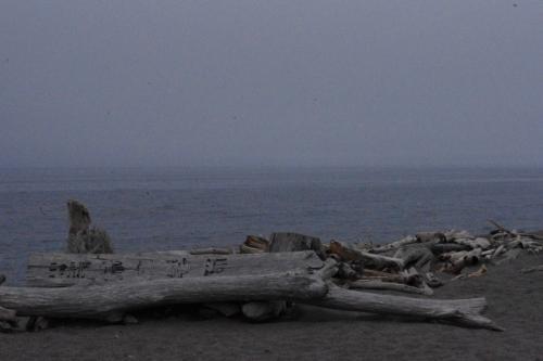 オホーツク海<br />流木<br />寂しげな風景<br />随分遠くに来たもんだ