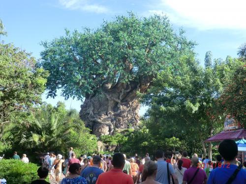 「ツリー・オブ・ライフ」<br />パークの中央に位置する巨大な樹(シンボルツリー)
