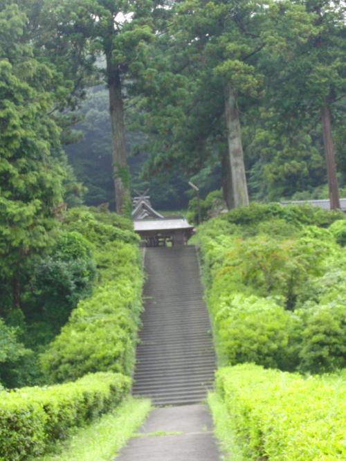 鳥居を潜れば神社が…と思ったら、またしても階段が。<br />湿気が多く、たいへんに蒸し暑いのだった(T_T)