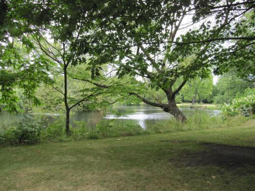 広〜〜〜い庭に、大き〜〜〜い池。<br /><br />ここで一羽の鳩を見かけたのですが、丸々と太っていてビックリしました。あんなに太っている鳩は見たことがないぞ。写真を撮り忘れたのが悔やむところ。