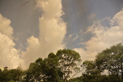 ホテルに帰った頃には青空が広がってきた。<br /><br />これなら雨の心配も少ない。<br />いざチョロンへでかけましょう。