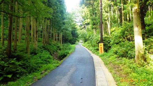結構山道です。