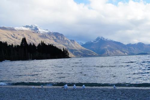 ワカティプ湖とカモメさん<br /><br />ワカティプ湖は一日のうちでも水位の変化が起こることが知られていて、<br />マオリの伝説によると、巨人が湖の中にいて、<br />巨人の心臓の鼓動に合わせて水位が変化するそうです。<br /><br />ニュージーランドはマオリとイングランドの影響が<br />共存していて、非常に興味深い独特の文化を形成しています。