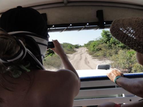 背中が写っている若いブラジル女性は、最初から目のやり場に困るようなビキニで参加しています。<br /><br />川を渡って小さな村を抜けると、悪路になります。<br />砂地の走行は4WDでも困難。<br />右へ左へ、上へ下へ・・・、もう、ぐるんぐるん。<br /><br />しかし、他の方々の旅行記に書かれていた「泥の水たまり」の走行はありませんでした。<br />乾季に入って1カ月余り。深いくぼみに水が少し残るのみ。<br />・・・期待していたので、少々残念でした。