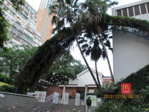 ホテルは九龍公園の向かい側。<br />ここは公園入口。