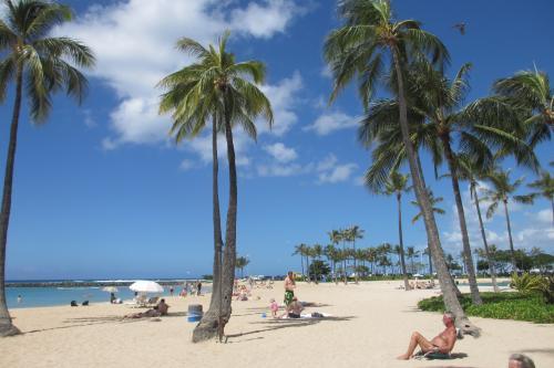 2013.9.8<br />ハワイ2日目<br /><br />今日はヒルトンンのプールで遊ぶ