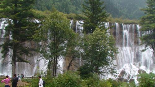 入口からエコバスに乗り換えてスポットまで移動。<br /><br />【諾日朗瀑布】だくじつろうばくふ(Yの字の分かれ所)<br />滝の高さは24.5m、幅は320m。<br />これまで九寨溝で発見された中では最も幅の大きいトラバーチン化(水に溶けている炭酸カルシウムが沈殿してできた緻密な縞状石灰岩)滝。