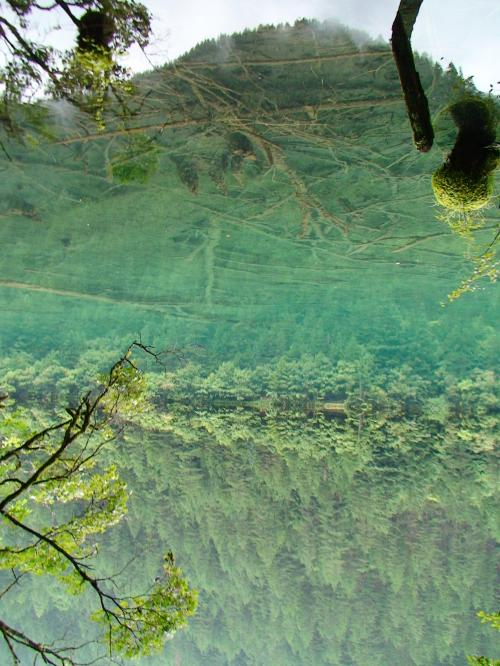 明日訪れる予定の鏡海だったけど、きれいに鏡になってたので、現地ガイドさんが気をきかせて、立ち寄った。<br />ほんと水の色と鏡状になってて、どこが境目か分からないほど。