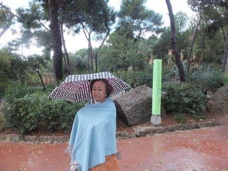 入園する時には雨が降り出しました。