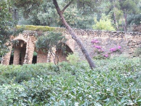 高低差のある園内を結ぶ柱廊の支柱は、ヤシの木がモチーフとなっています。