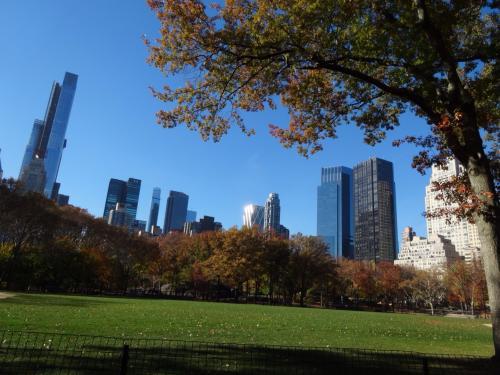 セントラルパークを散策しました(o^^o)<br />この風景がずっと見たかったので、テンションMAX☆<br />天気にも恵まれ、ニューヨークにいるんだなぁと改めて実感しました☆