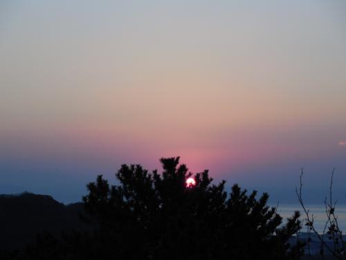 今年の日の出は、松の木の所から<br /><br />水平線(房総半島から)の日の出では、ありませんが<br />縁起の良い日の出です。<br /><br />手を合わせます。