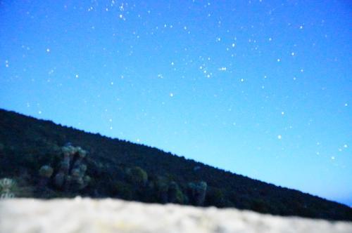 星がきれい。