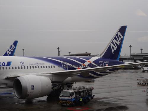 787 ドリームライナーの特別塗装機だ♪