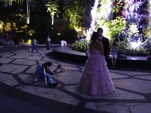 新婚さんが数組、写真撮影してました。<br /><br />カメラマンも必至。。