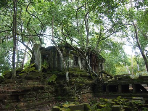 ジャングルから現れた遺跡。さながらラピュタのようです。<br />廃墟感が素晴らしいです。