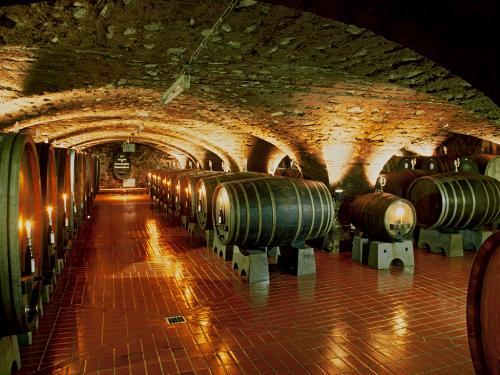 """⑦Cabinetkeller1カビネットケラーは1240年に僧の憩いの場・仕事場として建てられたが、後に貴重なワインの貯蔵所に使用された。<br />本日も、薄暗いこの場所にはワインの樽が幾つも並べられていました。<br /><br />1803年から、領主Nassau-Usingenナッサウ・ウジンゲン伯に依って、僧院は世俗化し、ワイン栽培国有地の増設が行われた。第二次大戦後はヘッセン州の所有となり、現在に至っている。<br />1985年にはショーン・コネリー主演の映画""""バラの名前""""が此処で撮影された事でも、知られている。ワインは買って帰れないのが辛いところだ!!(10:30~11:40、7Euro)<br />"""