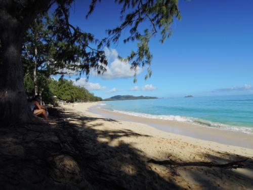 次は、ワイマナロビーチに寄りました。ここはビーチも長くとても綺麗ですが、近くにホームレスの方が大勢テント暮らしをしており、あまり長居して海水浴などを楽しむ感じではありませんでした。雰囲気はカイルアビーチに似ており、風があまり強くないカイルアビーチといった印象です。